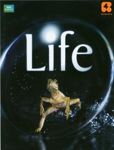 locandina Life Rete4