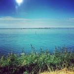 20140711 escursione delta del po 02 fotodeltaduemila